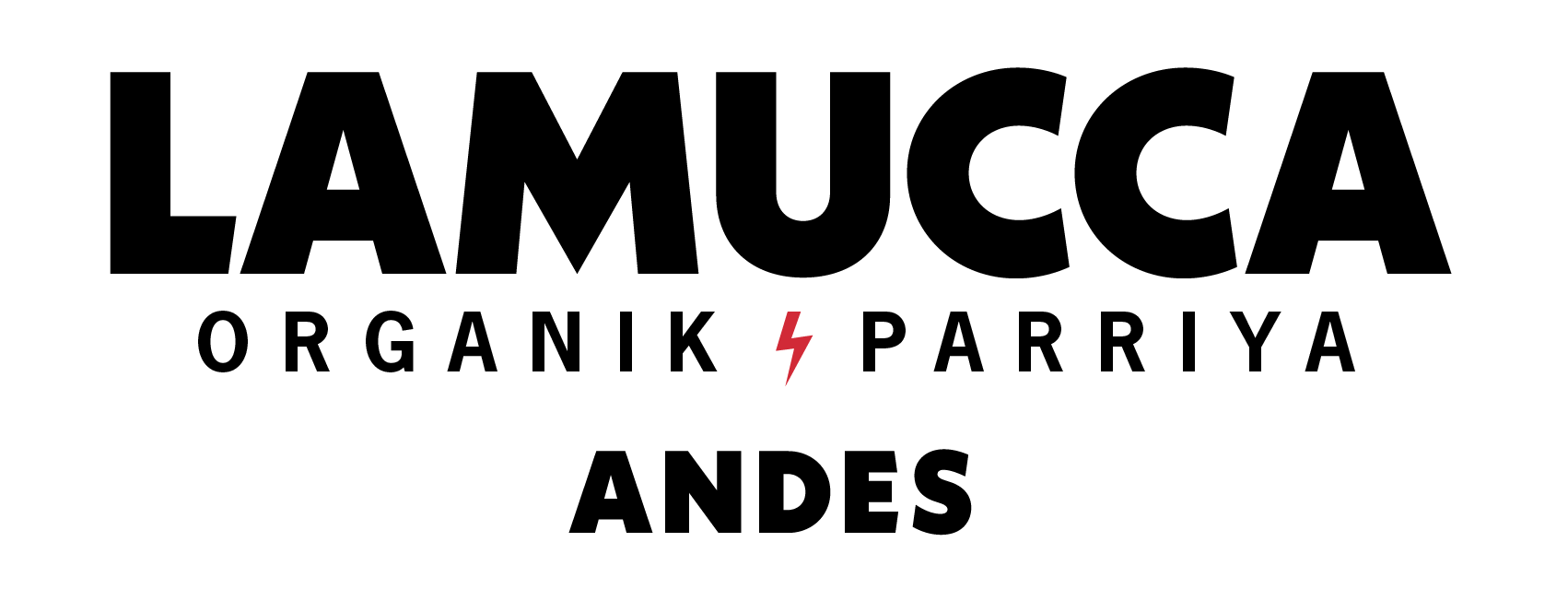 Logo Andes Negro